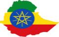 埃塞俄比亚签证案例分析
